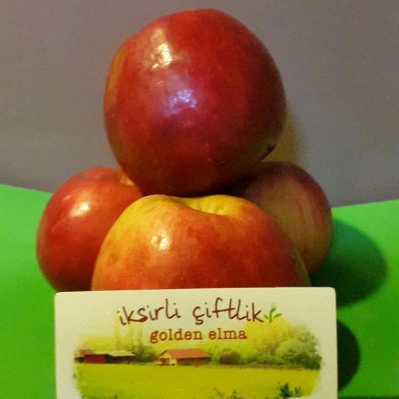 Bahçemizden Doğal Elma 500 gr.
