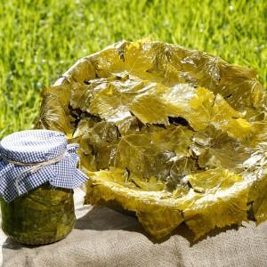 Kastamonu Üzüm Yaprağı Salamurası