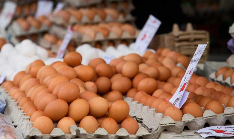 Yayladan Köy Yumurtası (15 Adet)